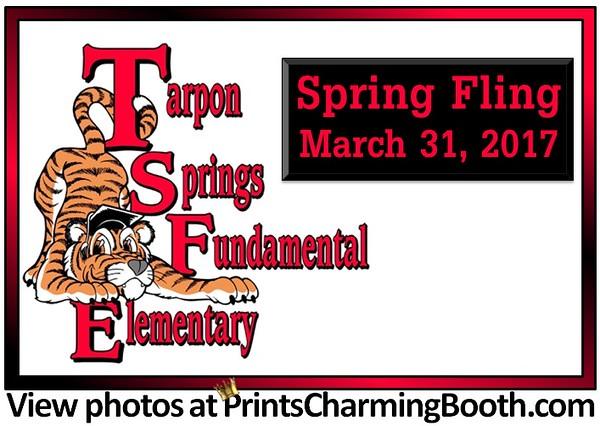 3-31-17 Tarpon Springs Fundamental Elementary Spring Fling.jpg