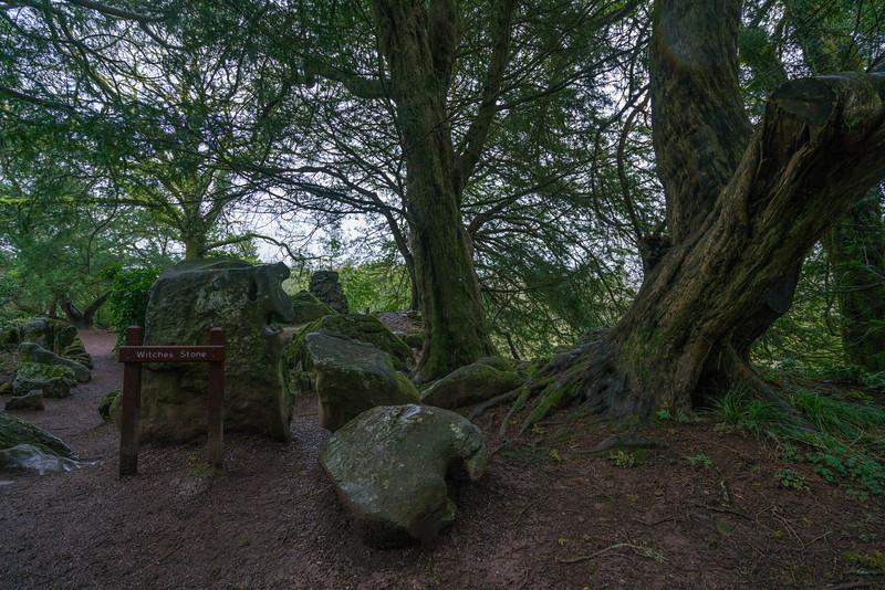 kissing-the-blarney-stone-5.jpg