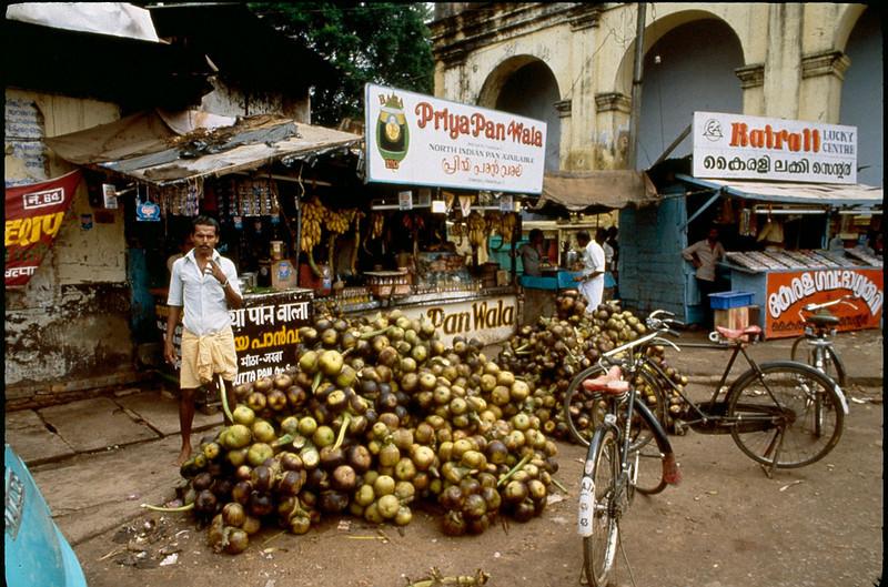 India2_052.jpg