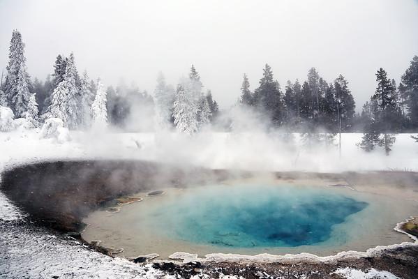 Yellowstone Winter 2016