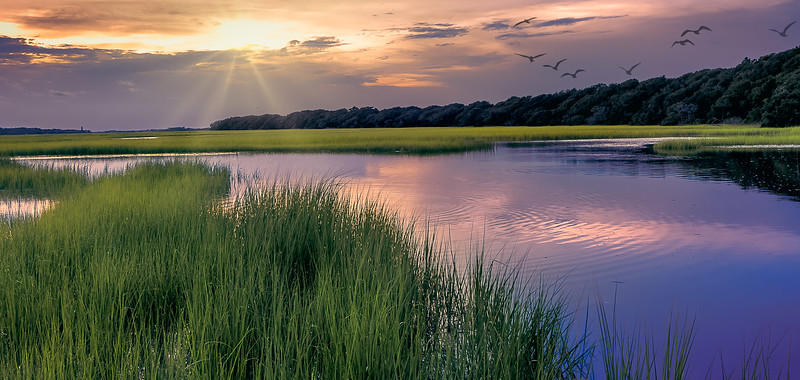 The Marsh Calling it a Day