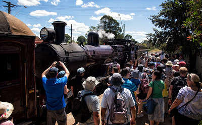 Thilrmere Festival of Steam 2019