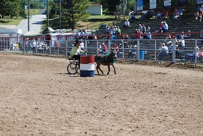 Minature Donkey/Mule Cart Barrels