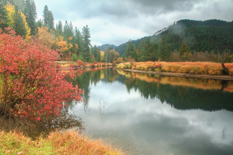 fall 2019 st maries river-1652.jpg