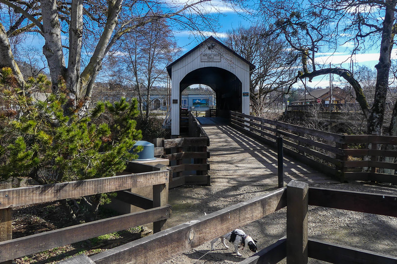 03-01-2021 Birthday Bridge Bash for Mo-35.JPG