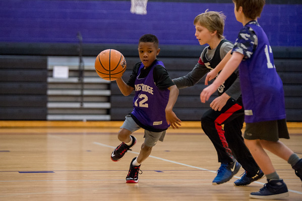 KRCSBasketball_JrTigers_9-10BoysPurple_02032018_Exported