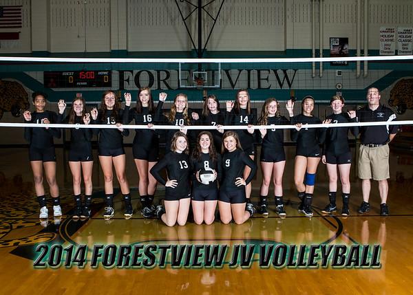 2014 Forestview Team Photos
