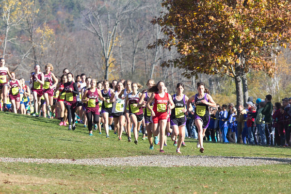 State Meet - Division III 10/25/14