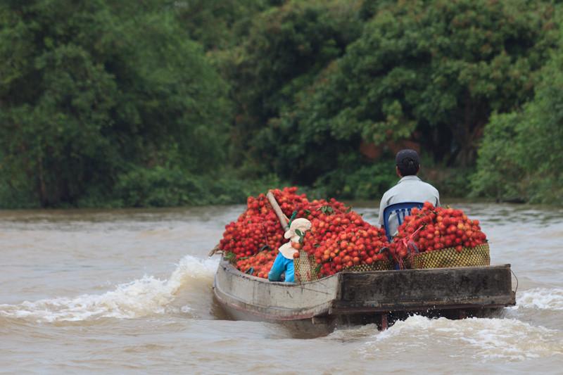 Vietnam_2214.jpg