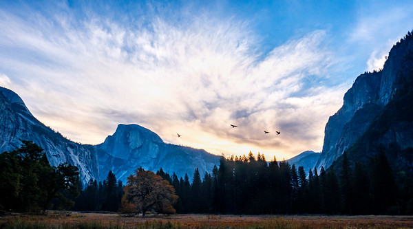 Yosemite and the Sierras