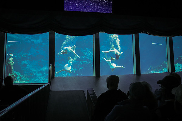 Weeki Wachee Springs Mermaid Theater Show