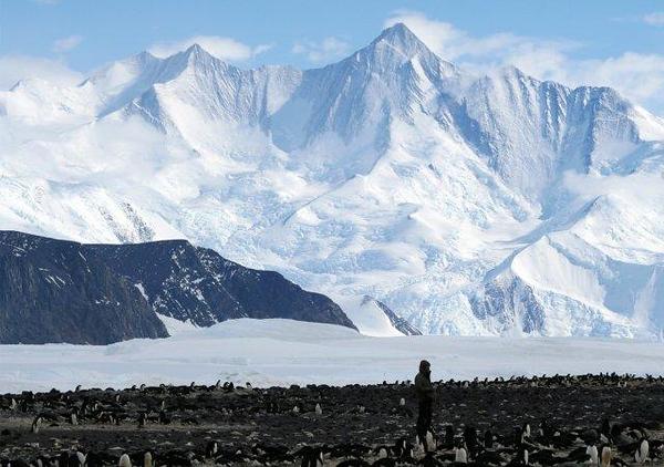 37831093-Antarctica-10.jpg