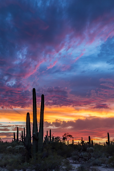 Sabino Sunset 8-19-2017c.jpg