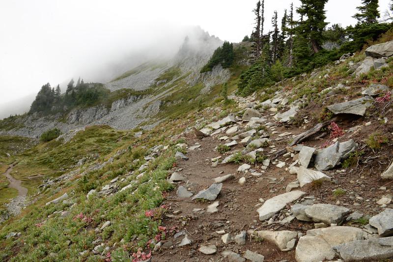 Pinnacle Peak Saddle Area