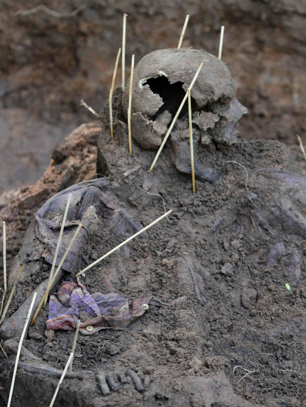 . Human remains discovered in the grounds of a police barracks in Asuncion, Paraguay on March 21, 2013. According to the researchers, 15 more skeleton remains, likely to be victims of the 1954 to 1989 dictatorship under Alfredo Stroessner, were found in the last two days. REUTERS/Jorge Adorno