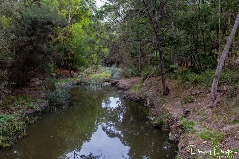 Gardners Creek