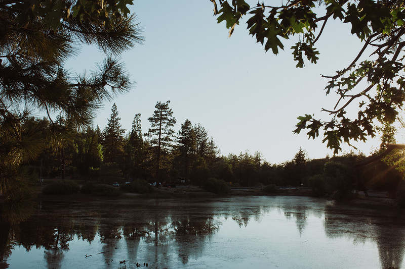 www.jennyrolappphoto.com-24.jpg
