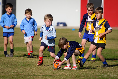 Auskick Griffith