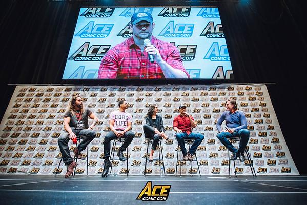 ACE Comic Con LI Day 3 2017
