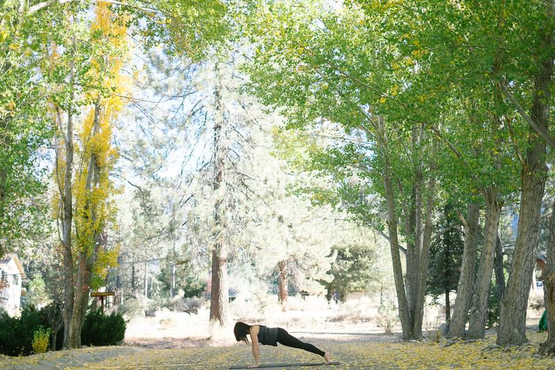 Toni Kuhn Yoga Photography Pine Mountain Club-48.jpg