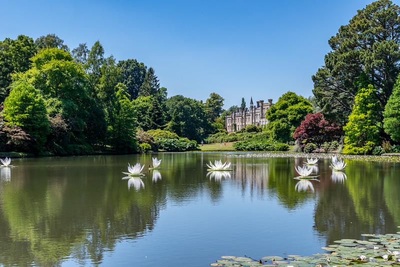 Sheffield Park Gardens (9 of 172).jpg