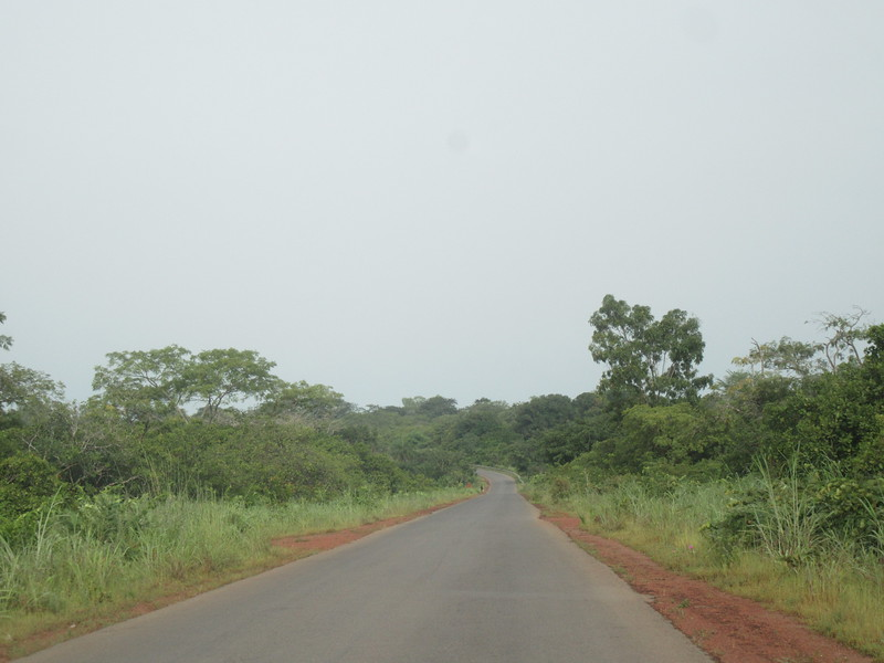 016_Guinea-Bissau. Road from the Cacheu Region to Bissau City.JPG