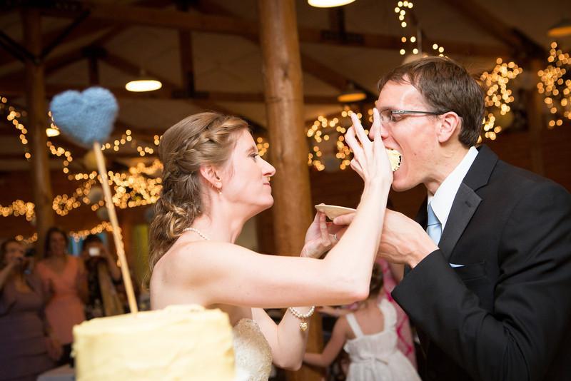 Wedding reception at Williams Tree Farm in Rockton, Illinois. Wedding photographer - Ryan Davis Photography, Rockford, IL.