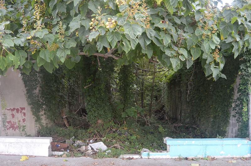 051 Ruins.jpg