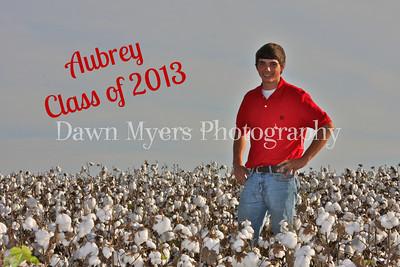 Aubrey Wynn-Class of 2013
