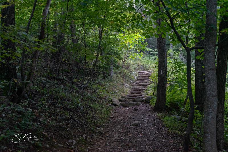 at hike-00330.jpg