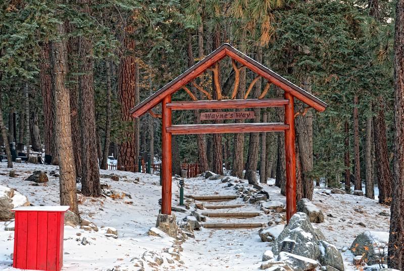 In memory of Wayne Camp de Bennevile Pines