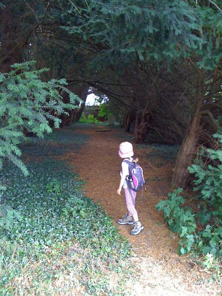 Behind the Penshurst village cemetary