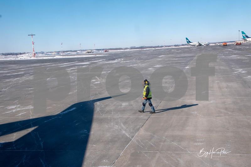 flight feb '19 p.jpg