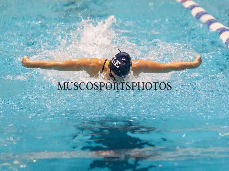 Swimming-diving vs Seton Hall_341.jpg