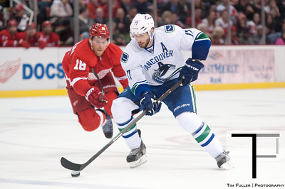 NHL: Vancouver Canucks at Detroit Red Wings 2/3/14