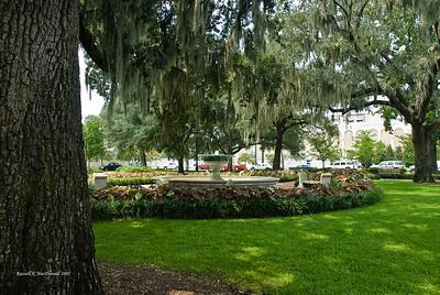 2007-08-13 Savannah