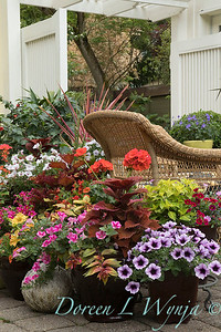 Options for Fine Gardening