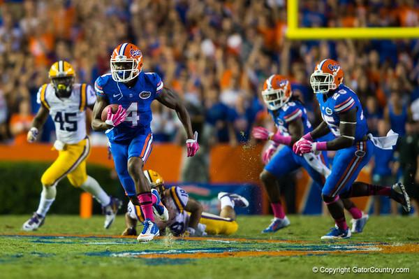 Florida Gators vs LSU Tigers Quick Gallery  10-12-14