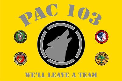 PAC 103