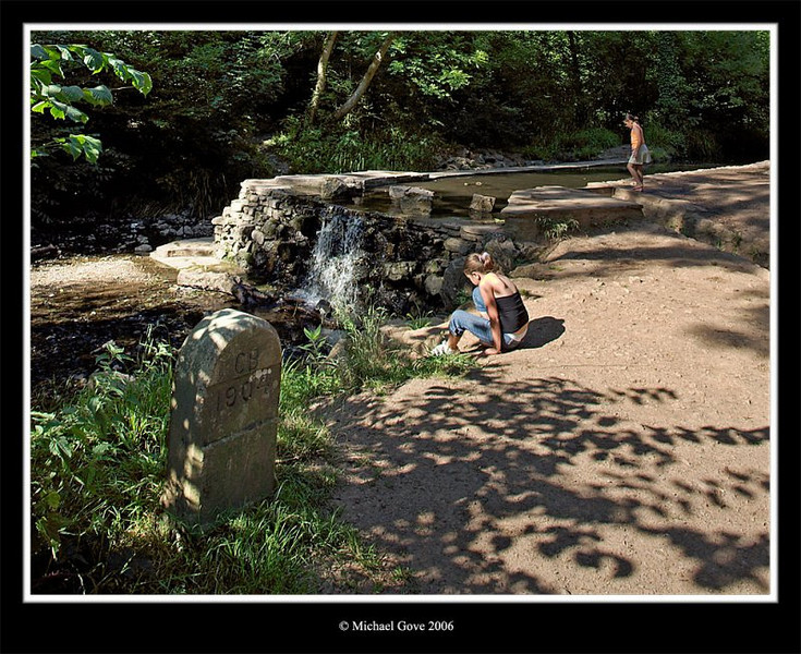 Cooling off in Blaise Castle pond (64211431).jpg