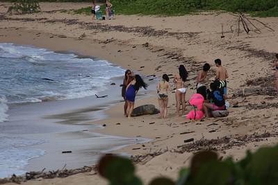 hawaii 2012 spring break