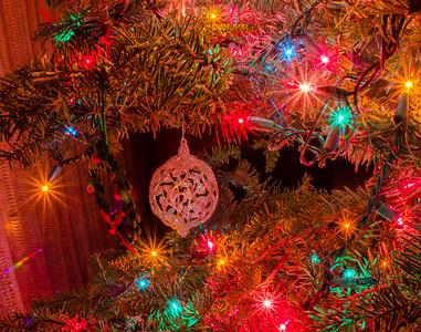 Christmas at Al Lisin's House 2015