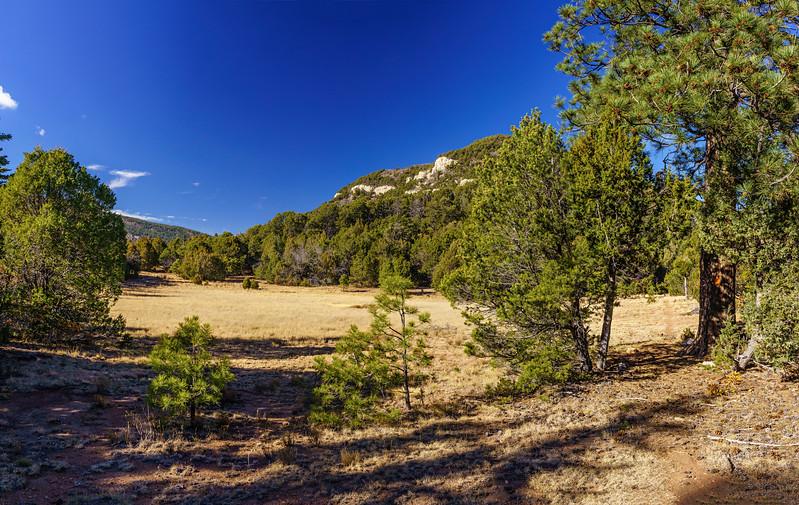 _DSC7724 Panorama adj crop.jpg