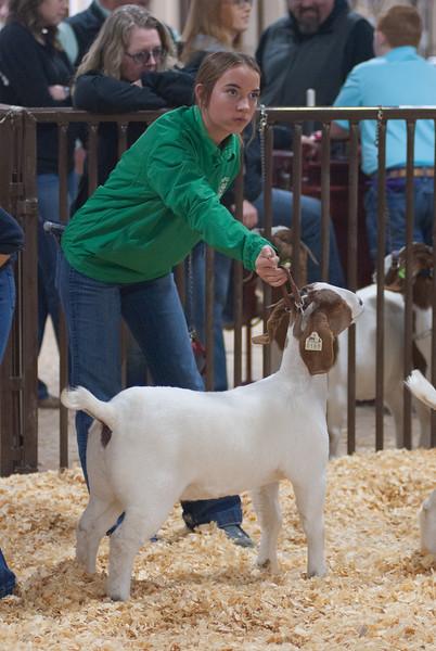 kay_county_showdown_goats_20191207-143.jpg