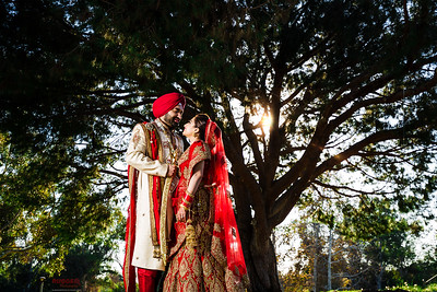 Neetu and Deepak- a week long wedding!