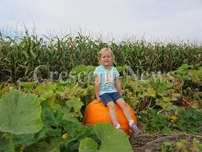 09-21-16 NEWS Leaders Farms Pumpkins