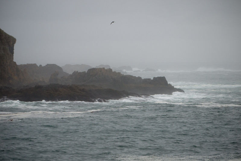 Leaving King Haakon Bay to cross the Drake Passage