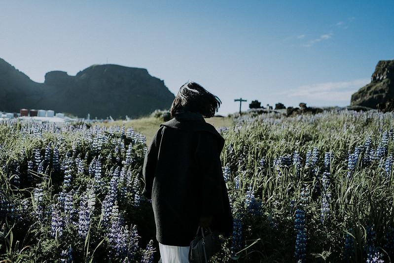 Tu-Nguyen-Destination-Wedding-Photographer-Iceland-Elopement-Fjaðrárgljúfur-16-64.jpg