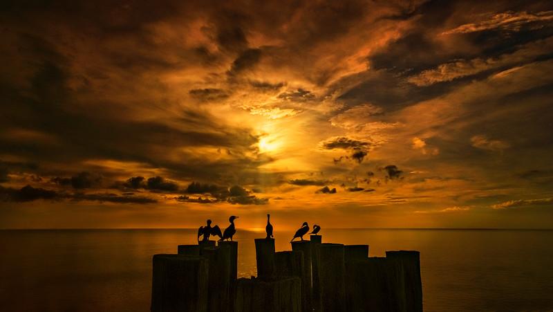 Sunrise and Sunset (2).jpg