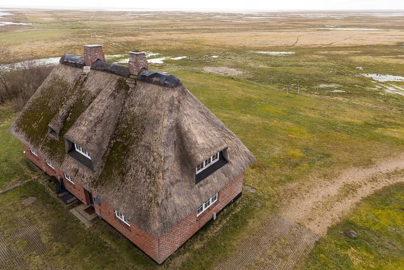 Danmark-Miljøer-Tipperne-Fuglestationen-2015-04-03-_42B6466-Danapix.jpg